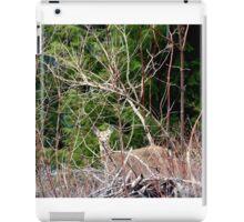 White Tailed Deer through Brush iPad Case/Skin