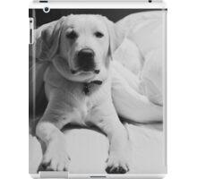 Sleepy Labrador iPad Case/Skin