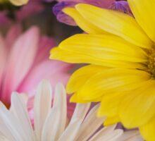 Colorful Daisys Sticker