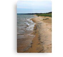 Lake Michigan Beach Metal Print