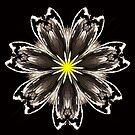 Atomic Lotus No. 6 by Bob Wall