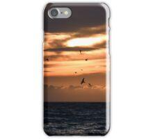Moody Murramarang iPhone Case/Skin