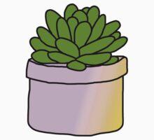 Succulent Baby Tee