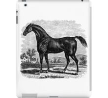 Vintage American Race Horse Flying Childers Illustration Retro 1800s Black and White Equestrian Image iPad Case/Skin