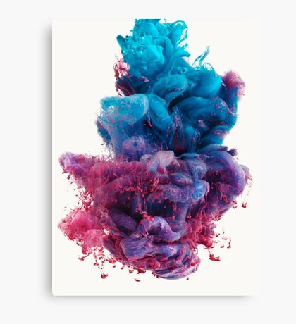 DS2  Canvas Print