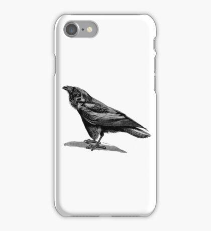 Vintage Raven Bird Illustration Retro 1800s Black and White Ravens Birds Image iPhone Case/Skin