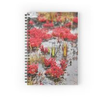 Plants at the Roraima Spiral Notebook