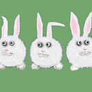 Three Sweet White Bunny Rabbits by Mary Taylor