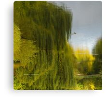 Reflected Willow Canvas Print