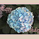 Blue Hydrangea, Happy Birthday by Mary Taylor