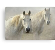 Two Whites - reworked Canvas Print