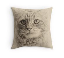 Felix the Cat Throw Pillow