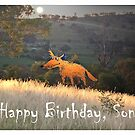 Fox in the Moonlight, Happy Birthday Son, Humor by Mary Taylor
