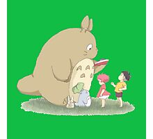 play with totoro Photographic Print