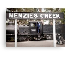 G42 at Menzies Creek -1004 Metal Print