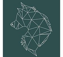 Geometric Wolf Photographic Print