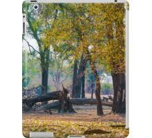 Ebony Grove Zambia iPad Case/Skin