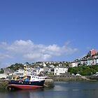 Brixham Harbour, Devon by lezvee