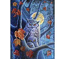 Harvest Moon Owls Photographic Print