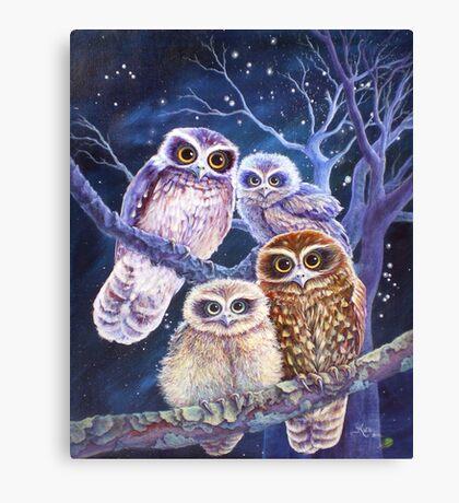 Boobook Owl Family Canvas Print