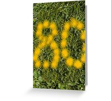 number eighty designed with dandelion on the lawn Greeting Card