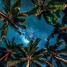 A Tropical Night Sky by Leanne Kelly