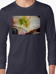 Amaryllis Close-up. Long Sleeve T-Shirt