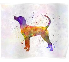 English Foxhound in watercolor Poster