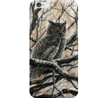 Winter Owl iPhone Case/Skin