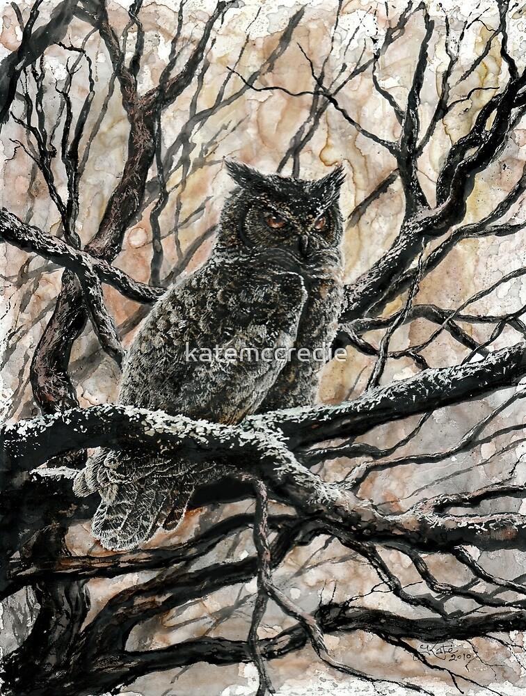 Winter Owl by katemccredie