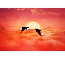 flying dolphins Photographic Print