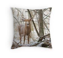 Edge of the Woods - White-tailed buck Throw Pillow