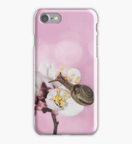 Sweet voyage iPhone Case/Skin