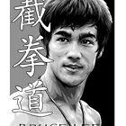 Bruce Lee - Jeet Kune Do Martial Art by lu2k