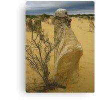 Ancestor Pillar, Pinnacles Desert, Western Australia Canvas Print