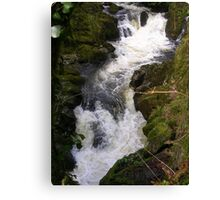 Lydia Falls, South Brent Canvas Print