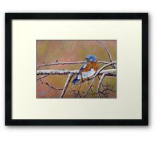 Bluey Framed Print