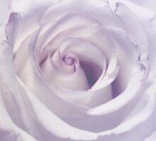 Lavender Dream Sticker