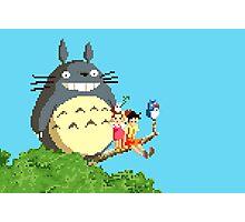 8 bit Totoro Photographic Print