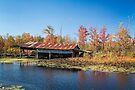 Old boat shed in Autumn by PhotosByHealy