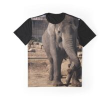 asia elephant Graphic T-Shirt
