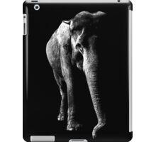 elephant, asia elephant iPad Case/Skin