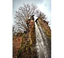 St. Audries Waterfall  Photographic Print