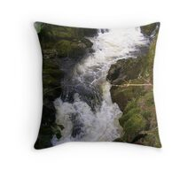 Lydia Falls, South Brent Throw Pillow