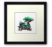 Earth Turtle Framed Print