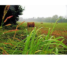 """Tall Grass and Hay Bales""... prints and products Photographic Print"
