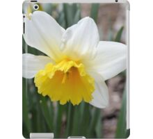 Spring's First Daffodil iPad Case/Skin