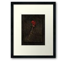 Blood Rose 2 Framed Print