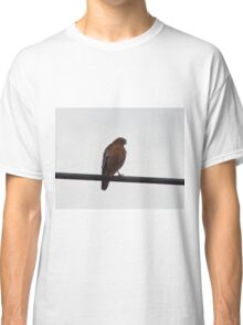 Red-Tailed Hawk Classic T-Shirt