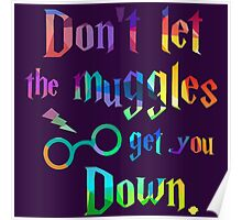 Don't Let The Muggles Get you Down Quote Poster